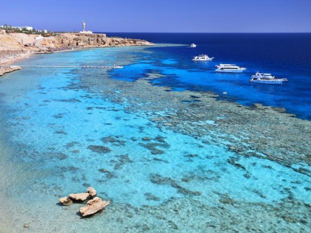 красное море в египте фото
