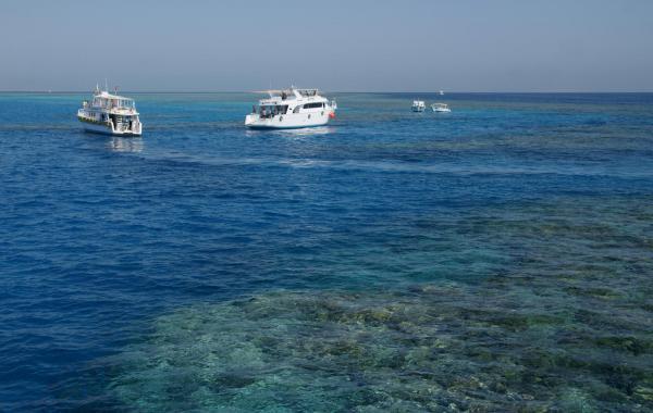 Красное море Египта