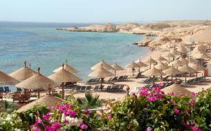 Цены на отдых в Египте в августе