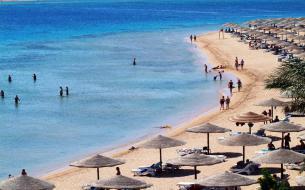 Египет в январе